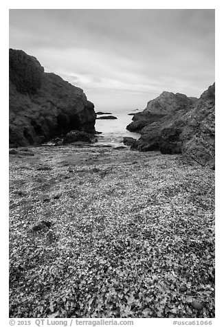 Rocky beach cove filled with seaglass. Fort Bragg, California, USA (black and white)