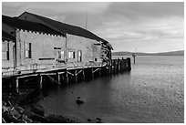 Wharf in late afternoon, Bodega Bay. Sonoma Coast, California, USA ( black and white)