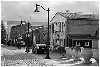 Cobblestone street in downtown. Petaluma, California, USA ( black and white)