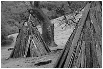 Reconstructed Miwok village, Olompali State Historic Park. Petaluma, California, USA ( black and white)