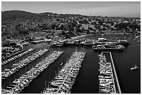 Aerial view of harbor. Monterey, California, USA ( black and white)