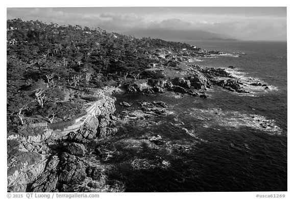 Aerial view of coastline, 17-mile drive. Pebble Beach, California, USA (black and white)