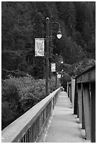 Bridge over Russian River, Monte Rio. California, USA ( black and white)