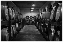 Barrels in cellar, Korbel Champagne Cellars, Guerneville. California, USA ( black and white)