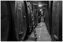 Huge barrels in cellar, Korbel Champagne Cellars, Guerneville. California, USA ( black and white)