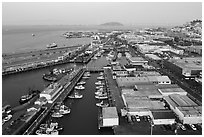 Aerial view of Fishermans Wharf fishering harbor. San Francisco, California, USA ( black and white)