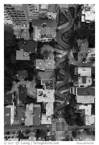 Aerial view of Lombard Street at dusk looking down. San Francisco, California, USA (black and white)