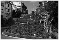 Crooked portion of Lombard Street. San Francisco, California, USA ( black and white)
