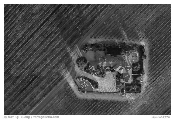 Aerial view of winery looking straight down. Livermore, California, USA (black and white)