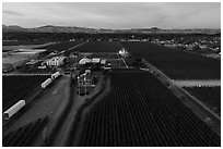 Aerial view of Concannon winery complex. Livermore, California, USA ( black and white)