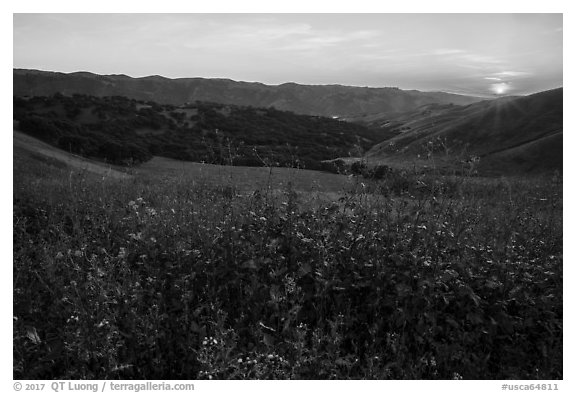 Spring Sunset over Del Valle Regional Park. Livermore, California, USA (black and white)