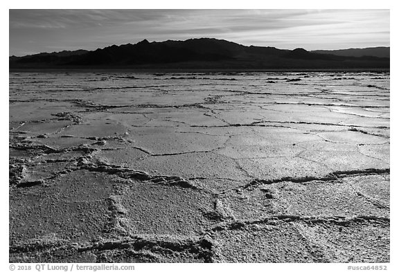 Salt flats near Amboy. California, USA (black and white)