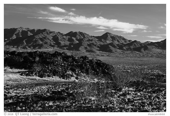 Lava field and mountains. Mojave Trails National Monument, California, USA (black and white)