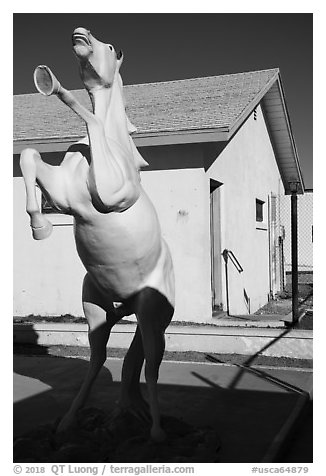Horse sculpture, Amboy. California, USA (black and white)