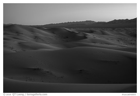 Dune ridges and Shiphole Mountains at dusk, Cadiz Dunes. Mojave Trails National Monument, California, USA (black and white)