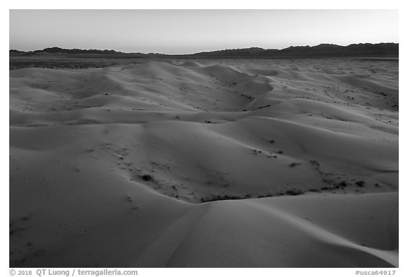 Aerial view of Cadiz Dunes Wilderness at dusk. Mojave Trails National Monument, California, USA (black and white)