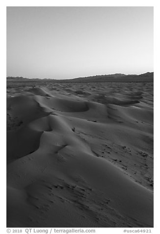 Aerial view of Cadiz Sand Dunes at dusk. Mojave Trails National Monument, California, USA (black and white)