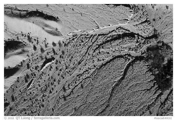 Aerial view of river wash, Afton Canyon. Mojave Trails National Monument, California, USA (black and white)