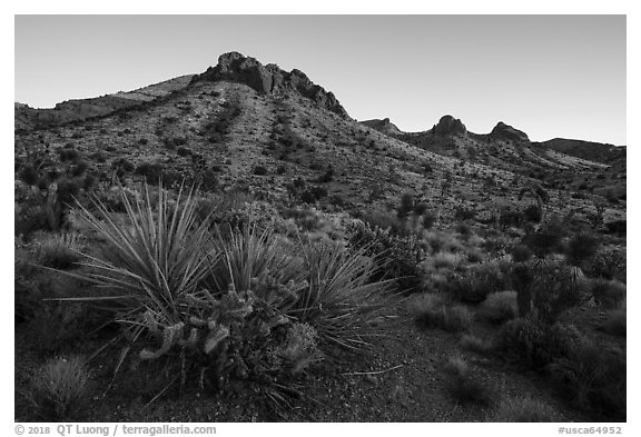 Castle Mountains, sunset. Castle Mountains National Monument, California, USA (black and white)