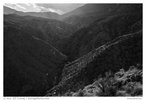 Deep Canyon and Santa Rosa Mountains. Santa Rosa and San Jacinto Mountains National Monument, California, USA (black and white)