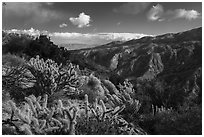 Deep Canyon from Santa Rosa Wilderness. Santa Rosa and San Jacinto Mountains National Monument, California, USA ( black and white)