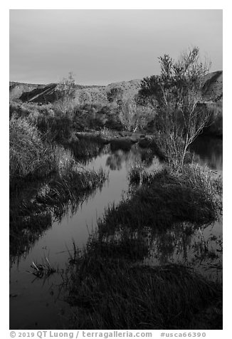 Mojave River crossing at sunrise. Mojave Trails National Monument, California, USA (black and white)