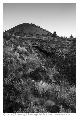 Wildflowers, Big Painted Cave, Schonchin Butte, sunrise. Lava Beds National Monument, California, USA (black and white)