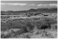 Grasslands and volcanic buttes. Lava Beds National Monument, California, USA ( black and white)