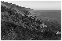 Blooms and costline from Partington Point at sunset. Big Sur, California, USA ( black and white)