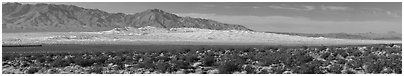 Vast Kelso Sand Dune field. Mojave National Preserve, California, USA (Panoramic black and white)
