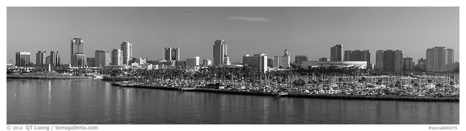Skyline with harbor. Long Beach, Los Angeles, California, USA (black and white)