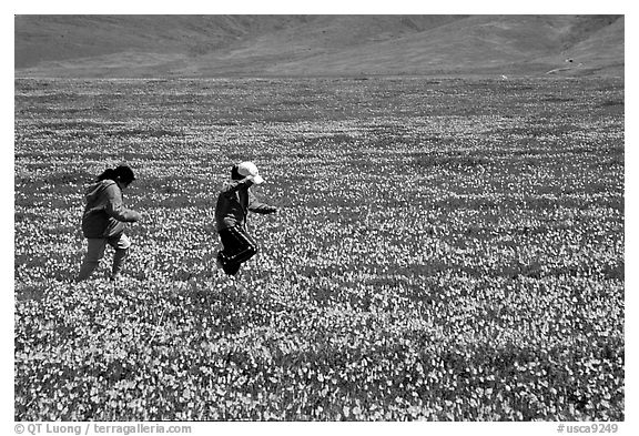 Children playing in a field of Poppies. Antelope Valley, California, USA (black and white)