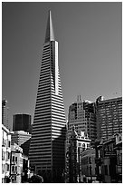Transamerica Pyramid and Columbus Tower. San Francisco, California, USA (black and white)