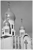 Bulbs of Russian Orthodox Holy Virgin Cathedral. San Francisco, California, USA (black and white)