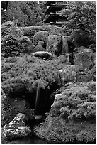 Cascade in the Japanese Garden, Golden Gate Park. San Francisco, California, USA ( black and white)