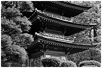 Pagoda, Japanese Garden, Golden Gate Park. San Francisco, California, USA ( black and white)