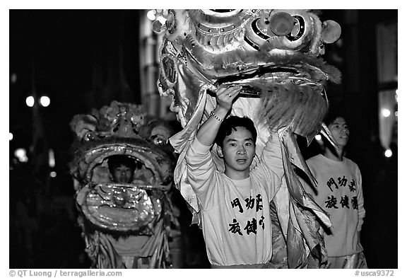 Lion dancers  during the Chinese New Year celebration. San Francisco, California, USA