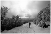 Summit trail after a snow-storm, Mt Diablo State Park. California, USA (black and white)