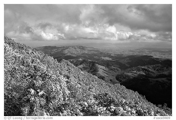 Looking towards green hills from the summit after a snow storm, Mt Diablo State Park. California, USA (black and white)