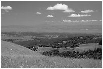 Meadows in the spring, with the Silicon Valley in the distance,  Russian Ridge Open Space Preserve. Palo Alto,  California, USA ( black and white)
