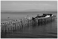 Pier, Capitola. Capitola, California, USA (black and white)