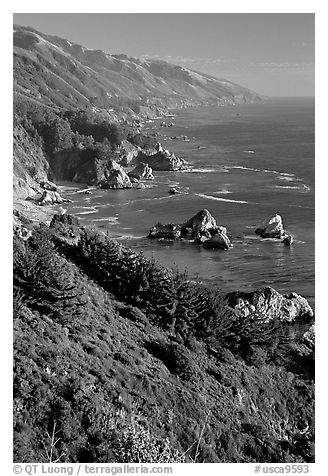 Cost from Partington Point, Julia Pfeiffer Burns State Park. Big Sur, California, USA (black and white)