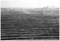 Mist and plowed field, San Joaquin Valley. California, USA ( black and white)