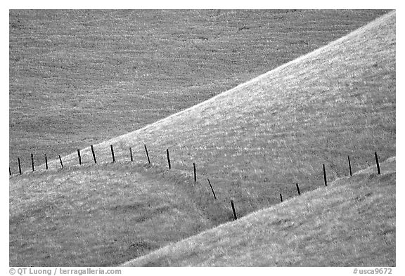 Fence on hill, Southern Sierra Foothills. California, USA (black and white)