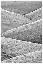 Ridges, Southern Sierra Foothills. California, USA ( black and white)
