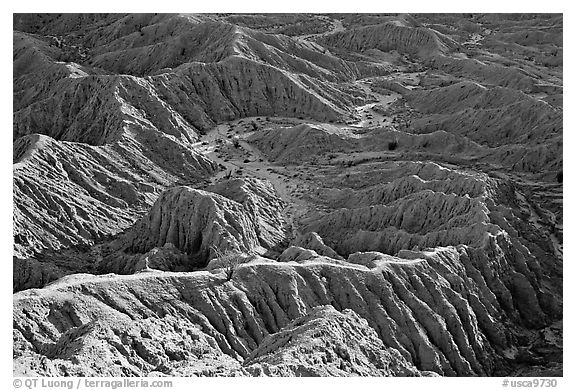 Erosion formations seen from Font Point. Anza Borrego Desert State Park, California, USA (black and white)