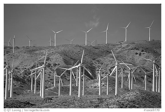 Electricity-generating Windmills, Horned Toad Hills near Mojave. California, USA (black and white)