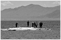 Fishermen on the shore of Salton Sea. California, USA ( black and white)