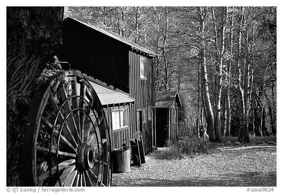 Mountain cabin in fall, Lundy Canyon, Inyo National Forest. California, USA (black and white)