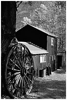 Rustic cabin in autumn, Lundy Canyon, Inyo National Forest. California, USA ( black and white)